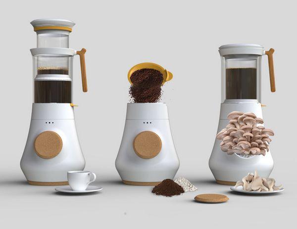 cafe fungo 4