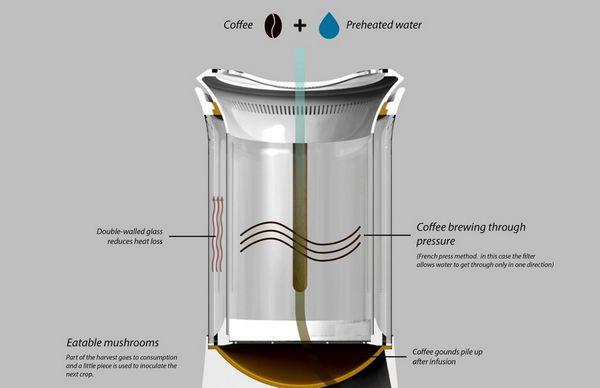 cafe fungo 6