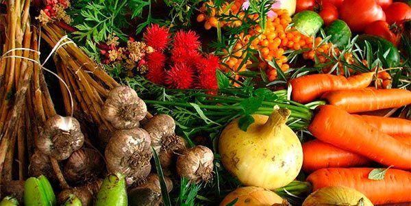 frutas-outubro
