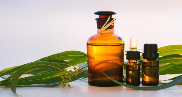 óleo de eucalipto