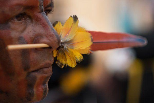 povos indigenas 10