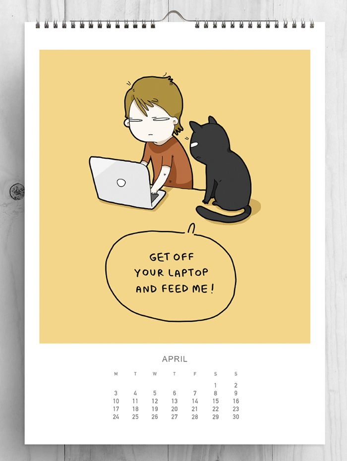 abril gatos