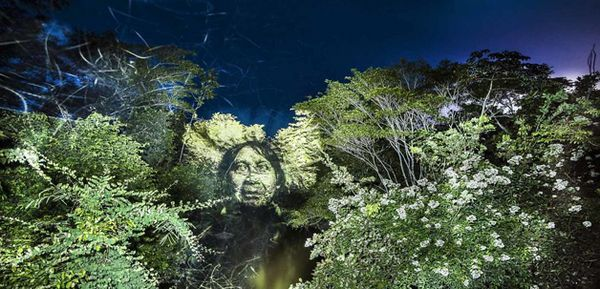 arte floresta 1
