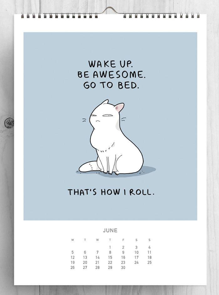 junho gatos