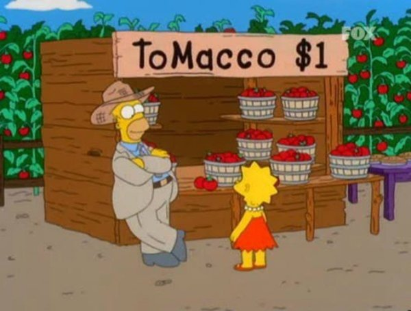 simpsons tomacco