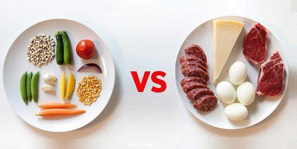 carnívoros e vegetarianos