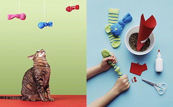 meias com catnip