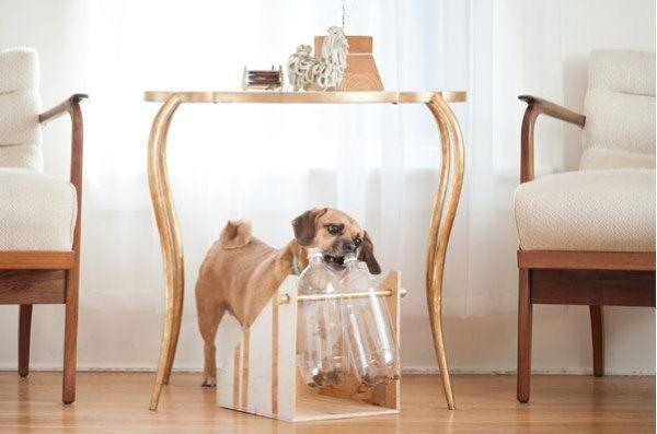 porta alimentos para cães
