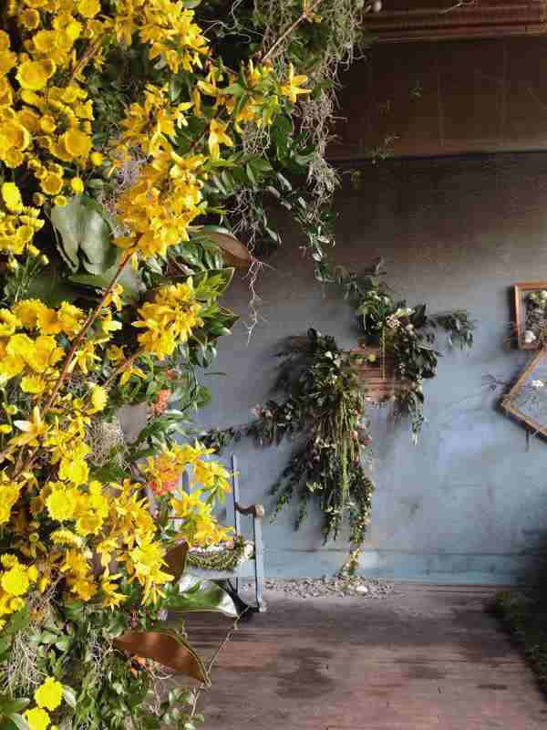 casa abandonada flores 5