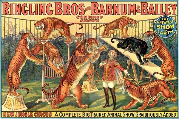 circo barnum 4