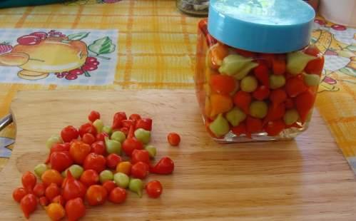 conserva de pimenta biquinho
