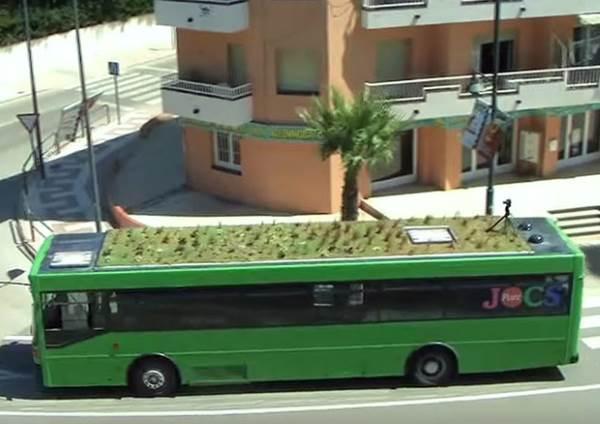 onibus teto verde 2