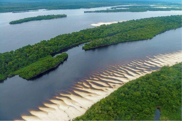 parque nacional amazonia