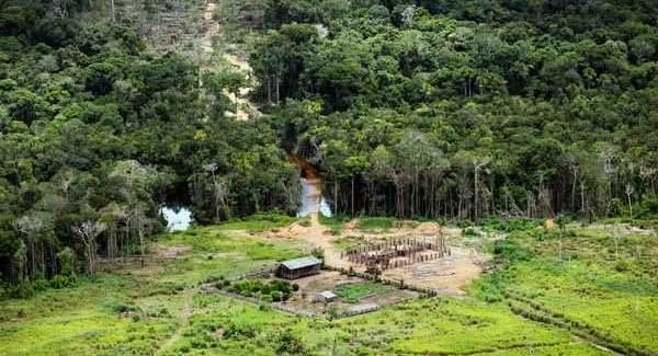 desmatamento amazonia 1