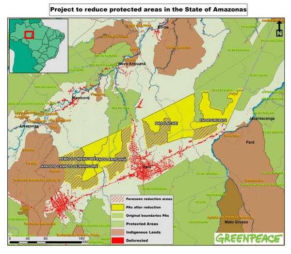 desmatamento amazonia 7