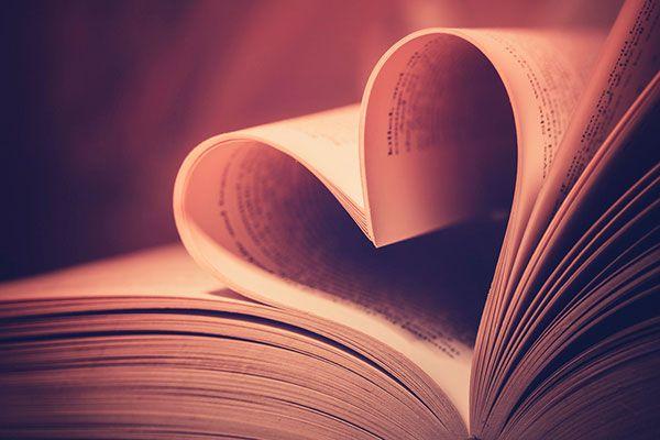 amor livro