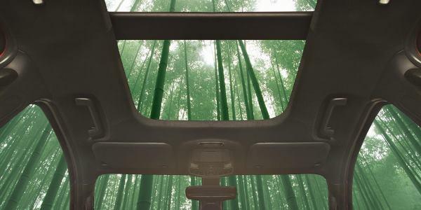carro-bambu-ford