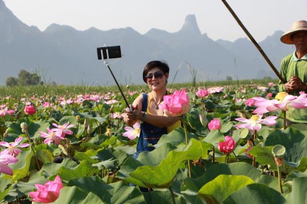 flor lotus thai 2