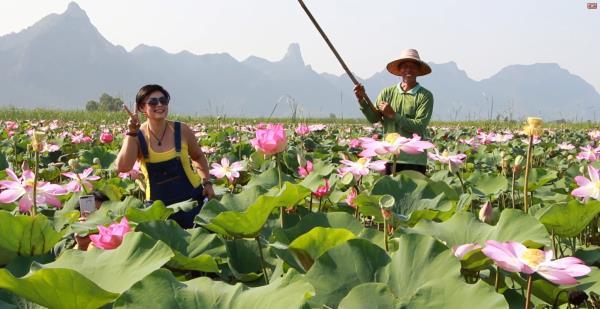 flor lotus thai 3