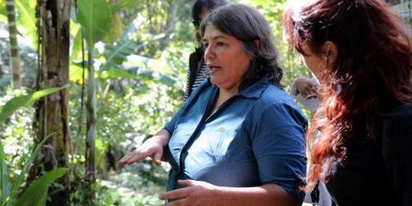 história Ana do Mel sustentabilidade