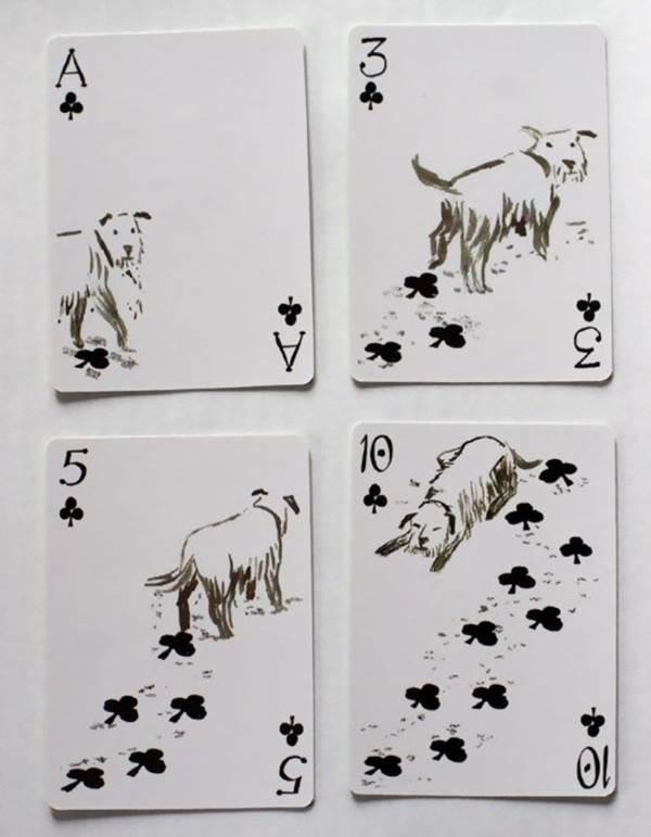 cartas cães 2