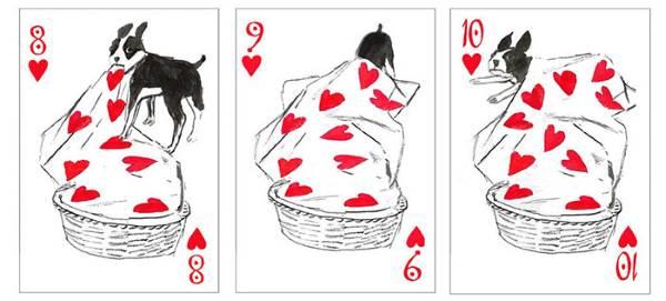 cartas cães 5