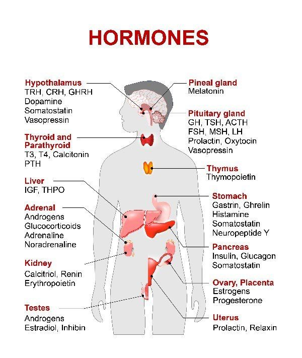 homem hormônios