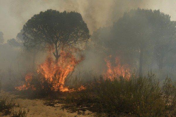 incêndio espanha 2