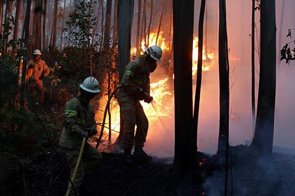 incendio portugal 2
