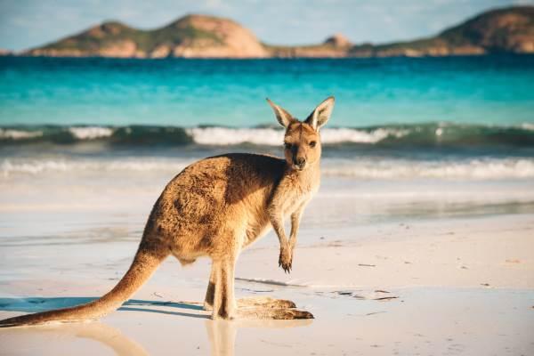 australia viajar 2