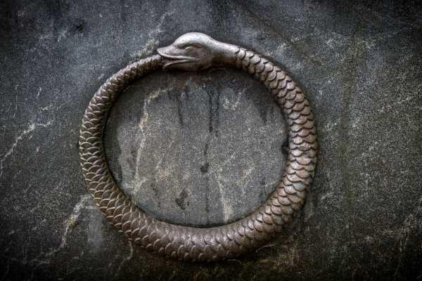 ouroboros serpente