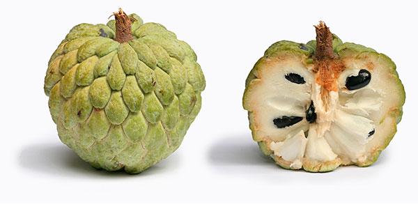 fruta do conde 2