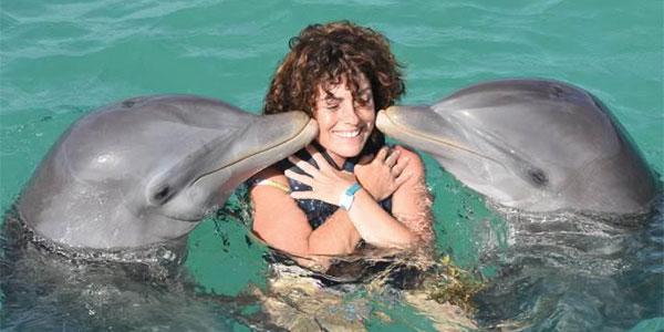 beijo golfinho