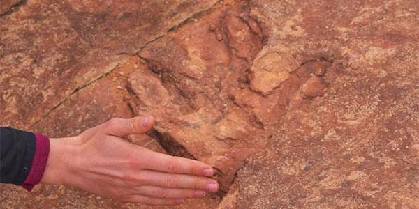 pegadas de dinossauros