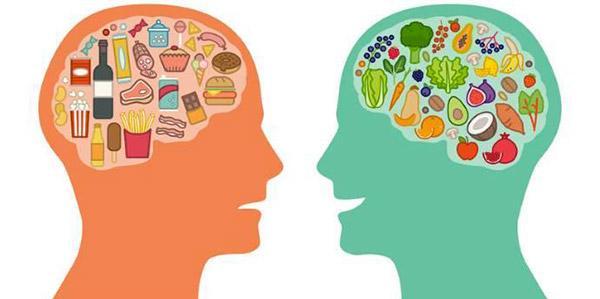 cérebro dieta