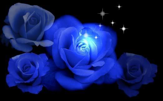 rosa azul lenda