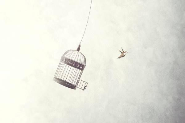 liberte o amor