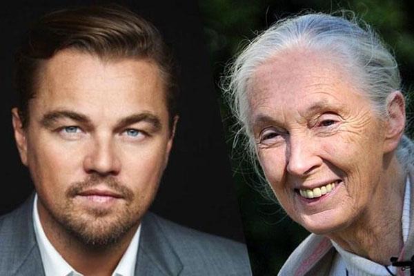 DiCaprio e Goodall