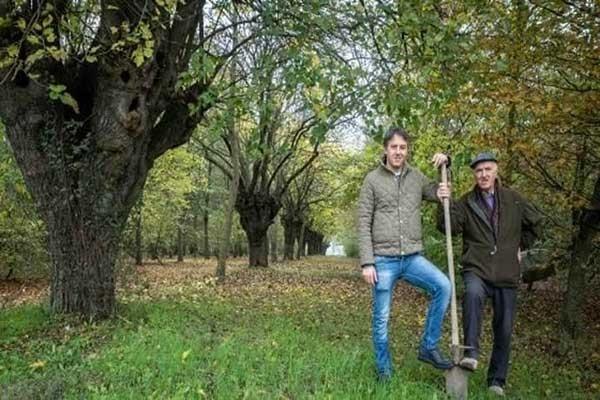 família plantou 11 mil árvores