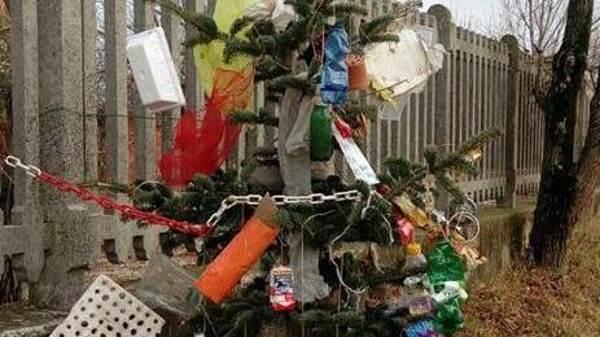 árvore natal embalagem de plástico