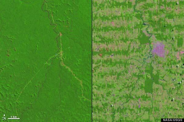 amazonia 1975