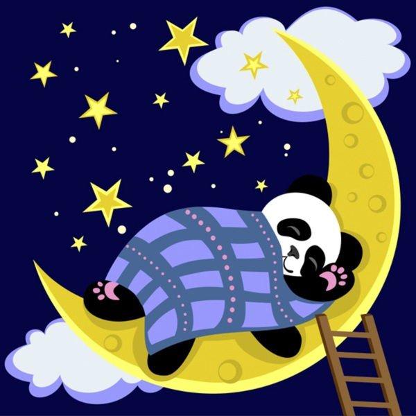 boa noite 2