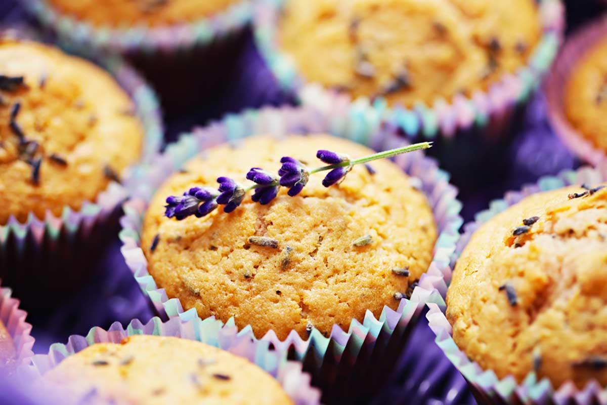 lavanda-muffins