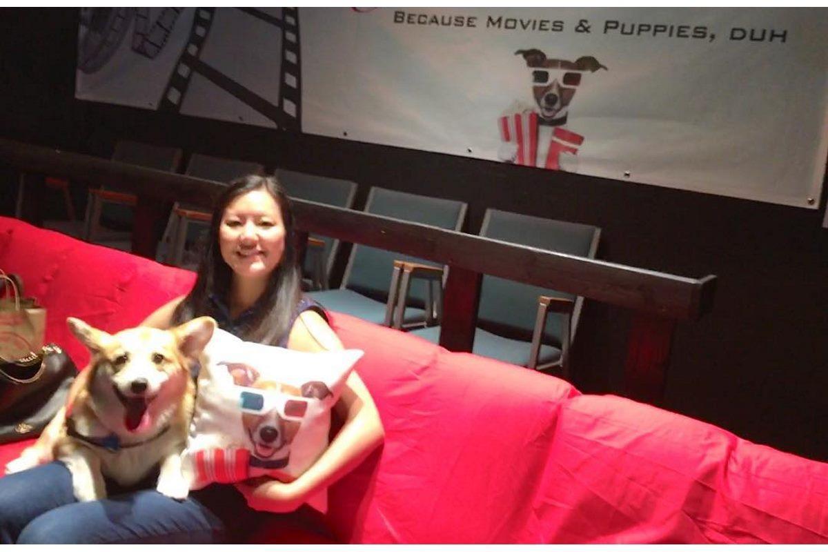 cineminha com cachorro