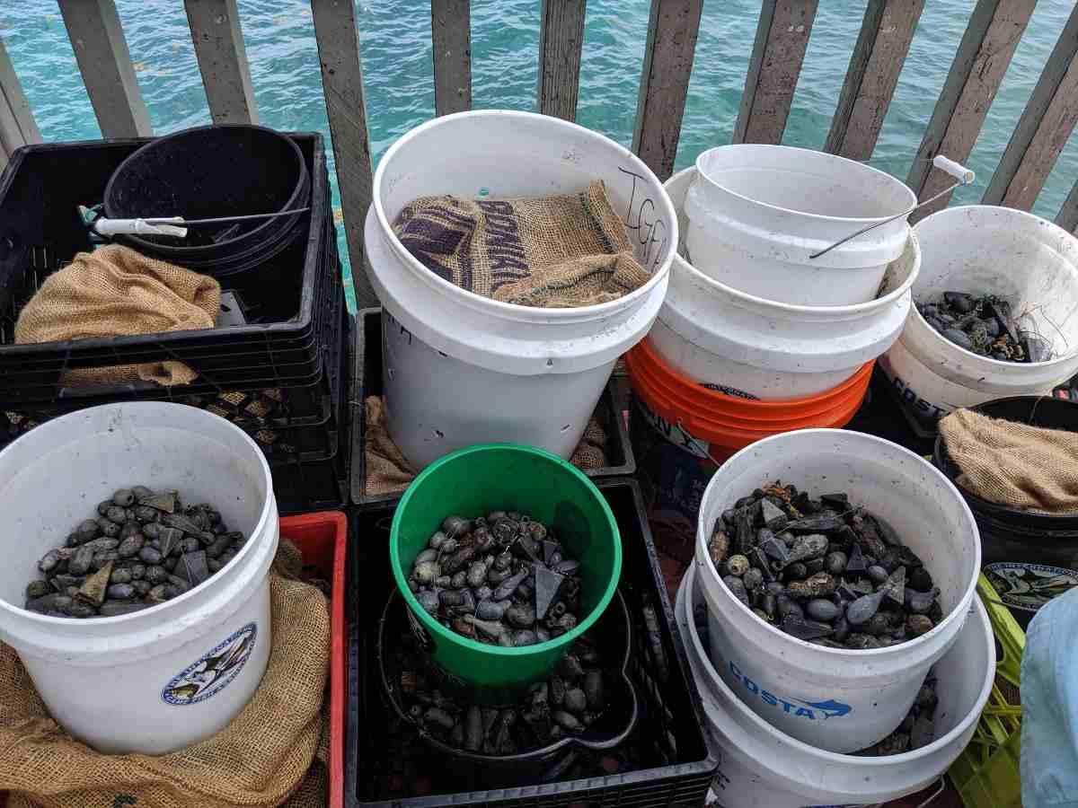 recorde mundial limpieza oceano 2