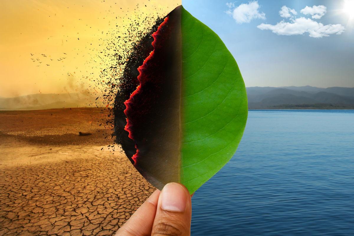 Crise ambiental