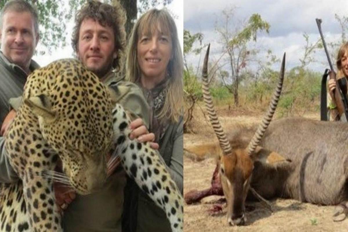Demitidos fotos de caça