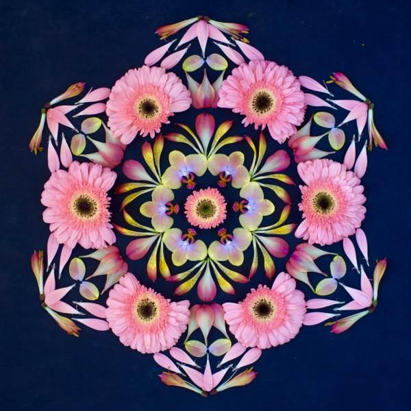 mandala flores 11
