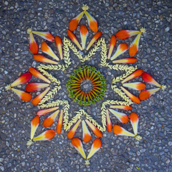 mandala flores 5