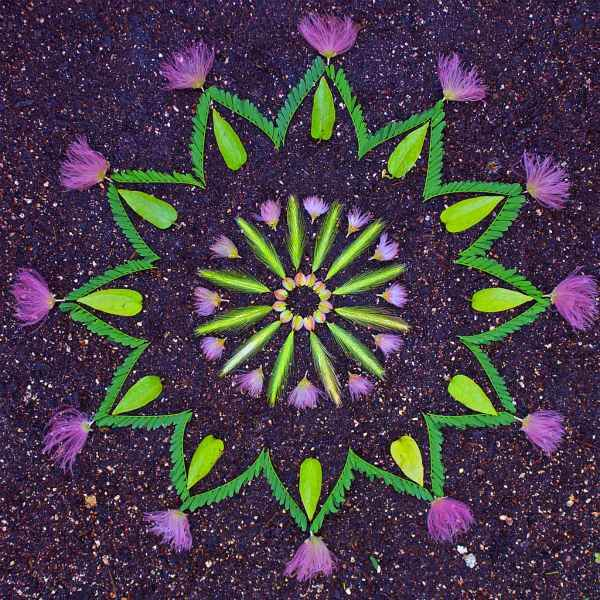 mandala flores 8